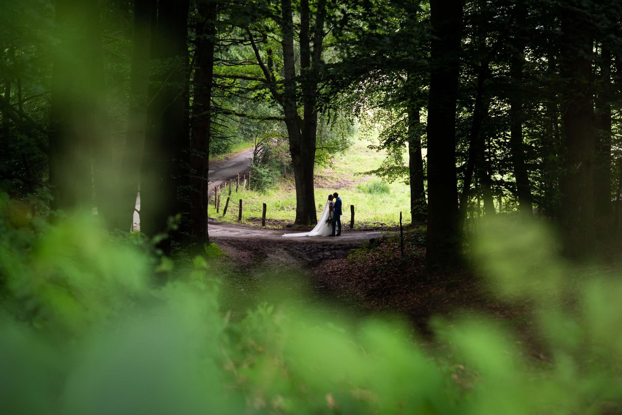 Fotoshoot bruiloft ardennen, in de bossen